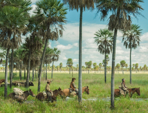 Film Review: Zama